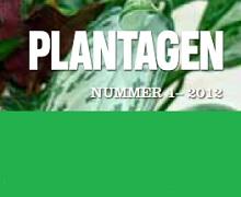 Plantagen Wallpaper